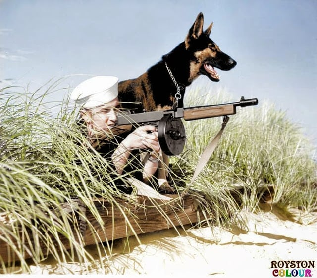 'Dog Beach Patrol', (possibly on Parramore Beach, Virginia, US. October 1943). (Source - United States Coast Guard - Photo No.726. Colorized by Royston Leonard from the UK)