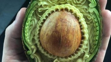 daniele barresi food carving fy 3 364x205 - Award-Winning Artist Transforms Everyday Foods into Patterned Masterpieces